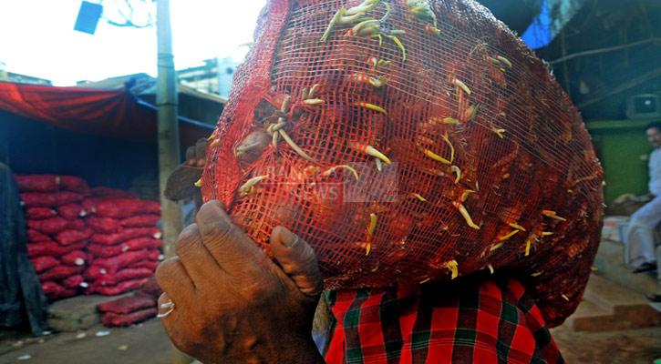 পেঁয়াজে পচন, অঙ্কুর বের হচ্ছে খাতুনগঞ্জের আড়তেই
